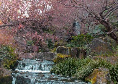 Japan Garten in Kyoto 2